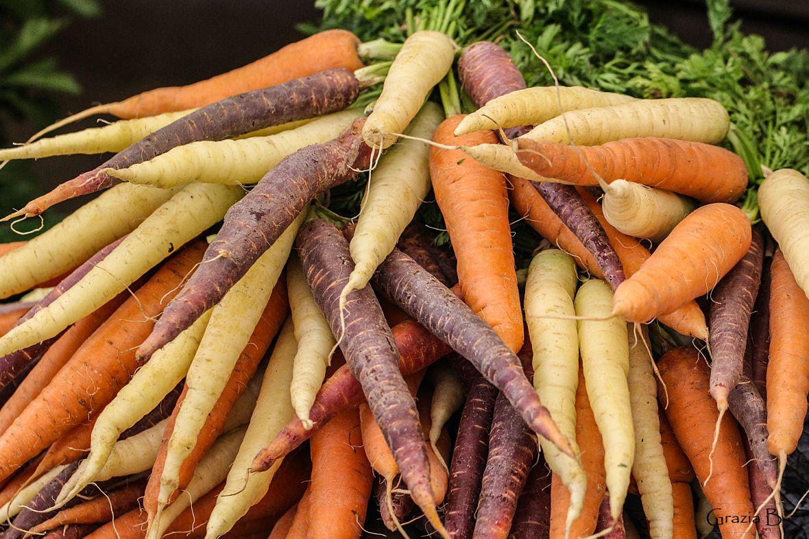 carrots-gloss