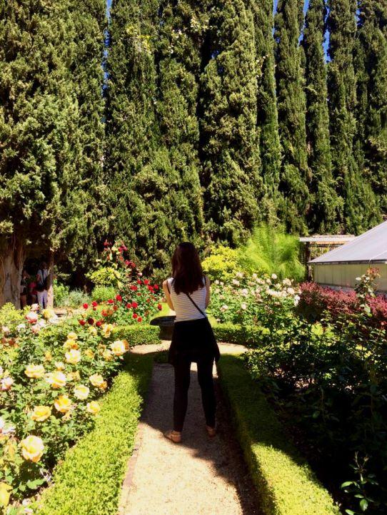 Stellen gardens 1